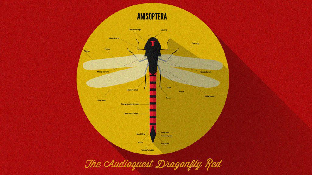 The Audioquest Dragonfly Red Review